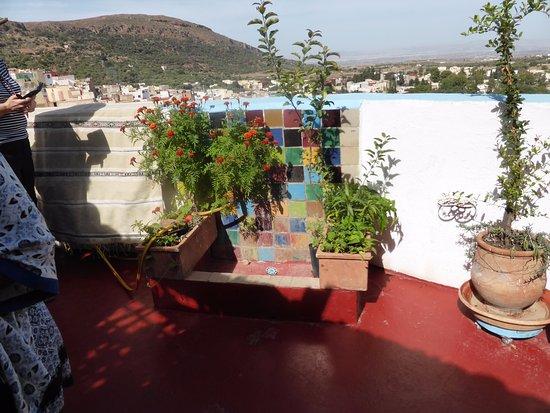 Dar KamalChaoui: Lovely rooftop