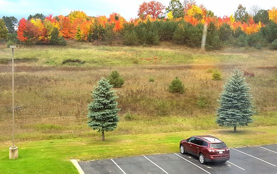 Cadillac, MI: Photo tells it all...Wonderful view.. it would be nice any time of year.