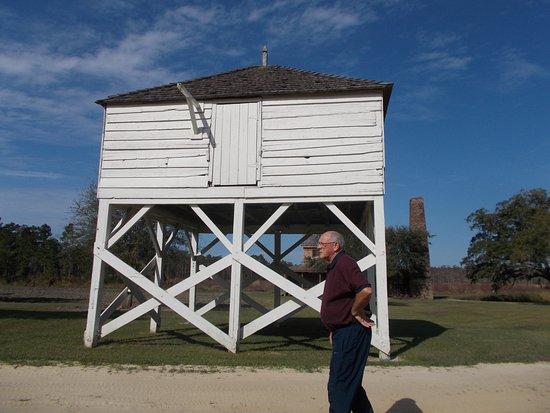 写真Mansfield Plantation枚