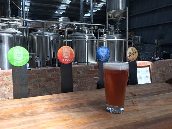 Healesville, Australia: The bar with brewery tanks in the background