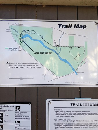 Trail map Picture of Edward Ball Wakulla Springs State Park