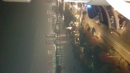 Hilton Tokyo Odaiba: 20161120_214435_large.jpg
