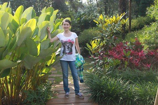 West Java, Indonesia: обожаю природу