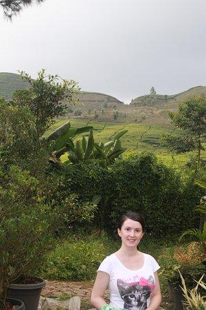West Java, Indonesien: вот такие пейзажи!