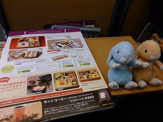 Kanto, Japón: 行きは、混んでいましたが、快適でした。