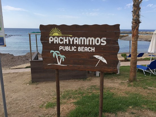 Pachyammos, Cyprus: Along the coastal path you can walk to Paphos in about 25 minutes . Near to the Olympic Lagoon R