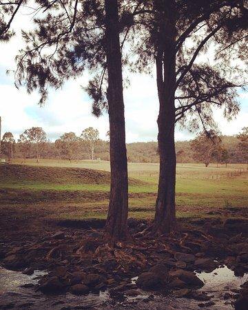 Maryvale, Australia: photo1.jpg