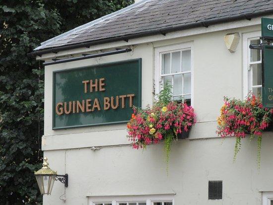 Guinea Butt