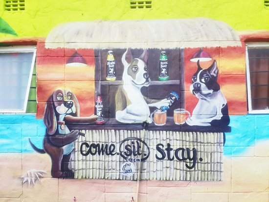 Magaliesburg, Sudáfrica: Come, Sit, Stay