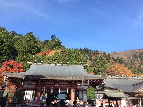 Isehara, Japan: photo5.jpg