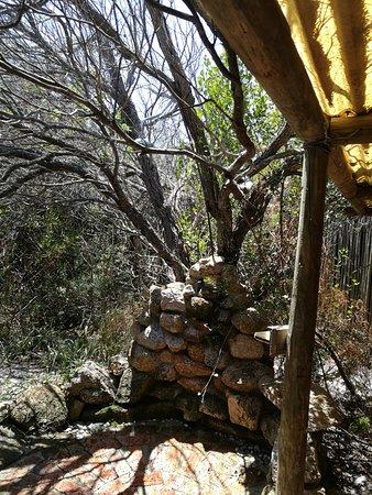 Bilde fra Yzerfontein