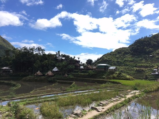 Tappiyah Falls: View of the rice terraces