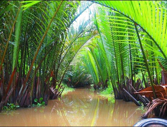 Chambres D'hotes MEKONG-LOGIS: Mekong Boat Trip