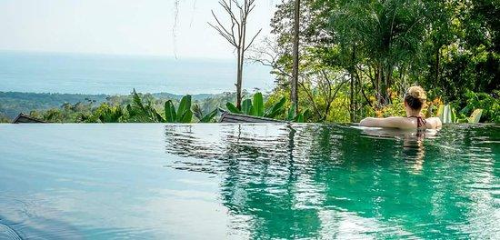 Oxygen Jungle Villas: FB_IMG_1427061667611_large.jpg