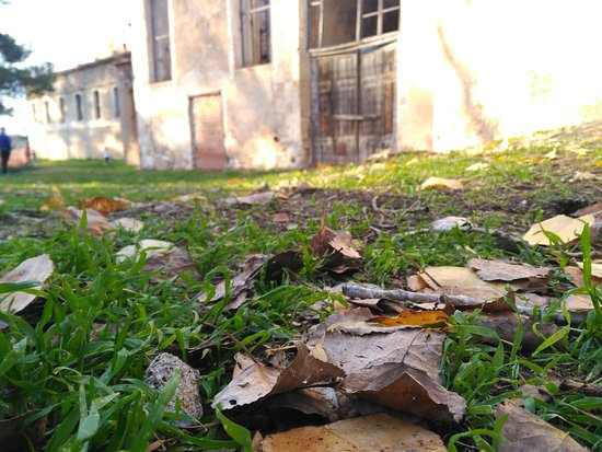 Casa Rural La Alqueria del Pilar: IMG-20161120-WA0039_large.jpg