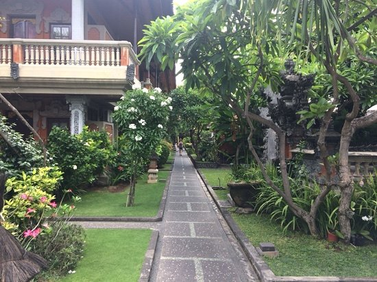 Adi Dharma Cottages: looking down the path to the cottages