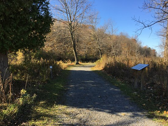 Macedon, Nowy Jork: Butterfly Nature Trail - view along the trail