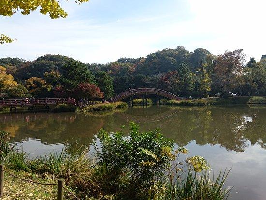 Shomyo-ji Temple: DSC_0392_large.jpg