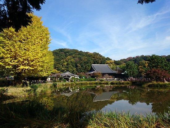 Shomyo-ji Temple: DSC_0393_large.jpg
