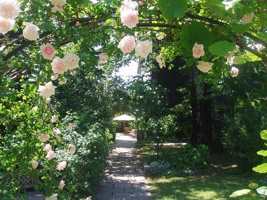 Riols, Frankrike: doorkijk in de tuin
