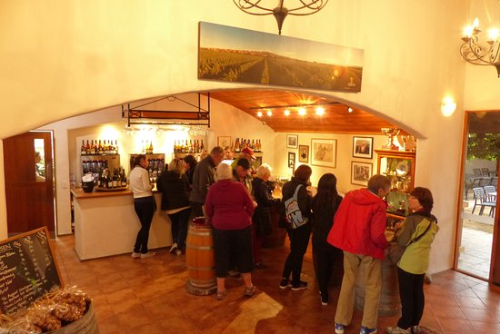 Picton, Nueva Zelanda: Giesen Winery Bar
