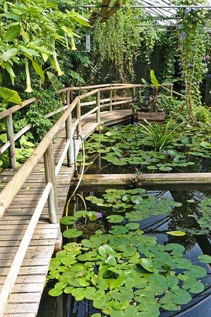 giroussens, jardins des martels, serre tropicale - photo de