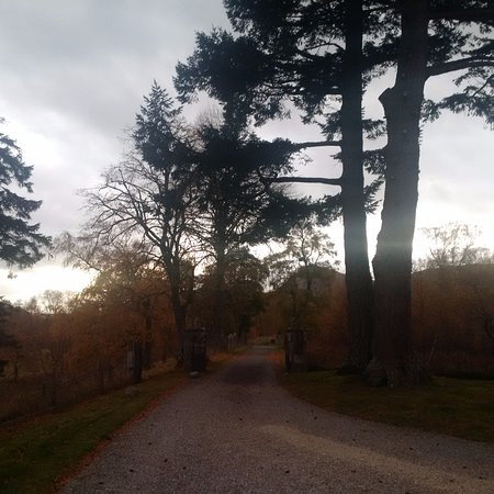 Newtonmore, UK: The drive in Autumn