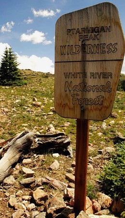 Ptarmigan Peak Wilderness