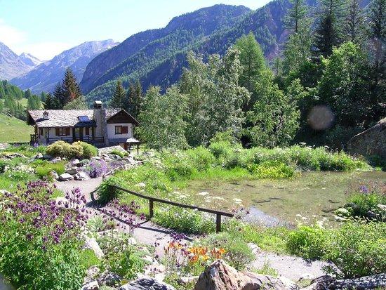 Giardino Botanico Alpino Paradisia