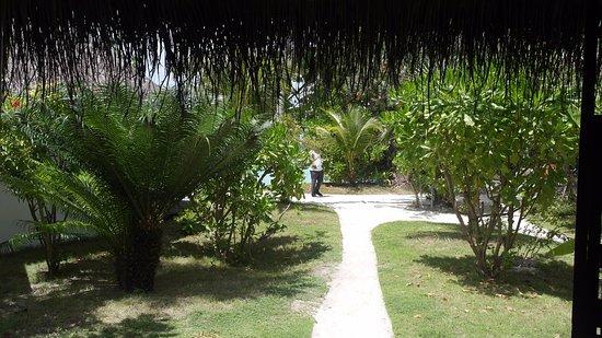 Kuramathi: View from our villa