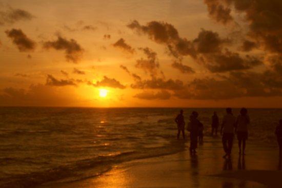 Kuramathi: Sunset on the sandbank