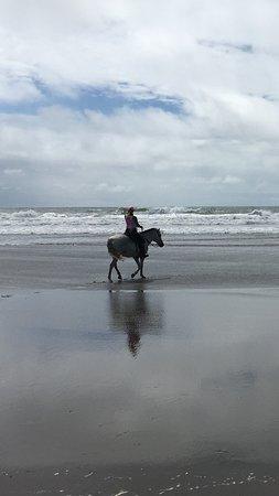 Esterillos Este, Costa Rica: Horseback riding at CR Beach Barn best horses of the area guaranteed  check out for your self!