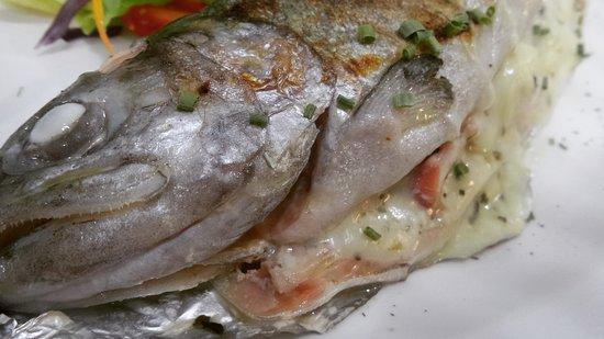 RESTAURANTE PULPO LOCO: Trucha rellena con mariscos y queso asadero