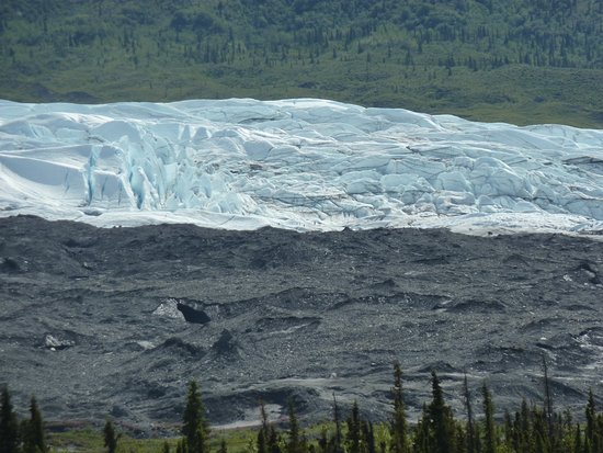 ปัลเมอร์, อลาสกา: Alaska Life & Glacier Tours