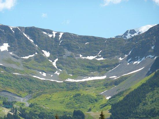 Palmer, AK: Alaska Life & Glacier Tours
