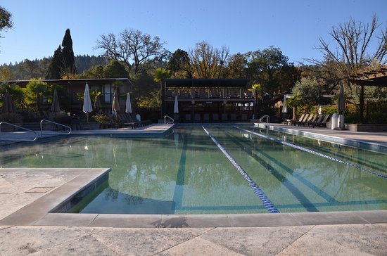 Calistoga Spa Hot Springs: Another view of the lap pool. The gardens around the pool are very nicely designed.