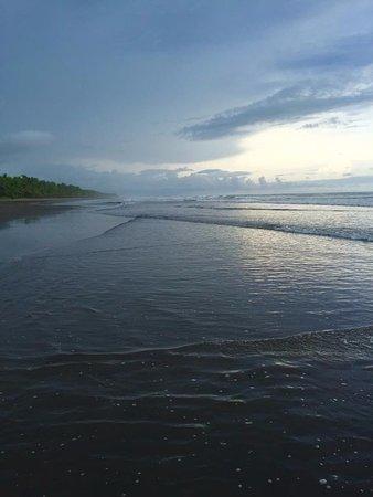 Esterillos Este, Costa Rica: plage
