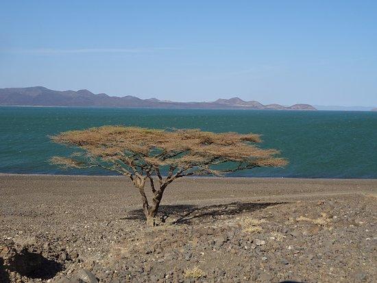 Turkana District, Kenya: Lake Turkana