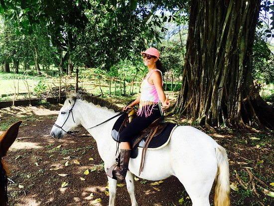 Esterillos Este, Costa Rica: Horseback riding at CR Beach Barn is the spot for horse lovers !