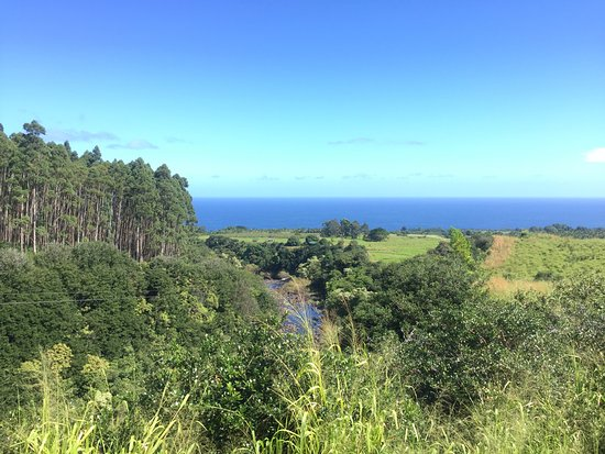 Hakalau, HI: From the top of the hill