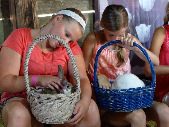 Nelis' Dutch Village: Bunnies in a basket