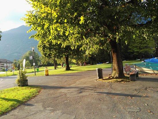 Boenigen, Szwajcaria: het parkje aan de overkant, grenzend aan de brienzersee