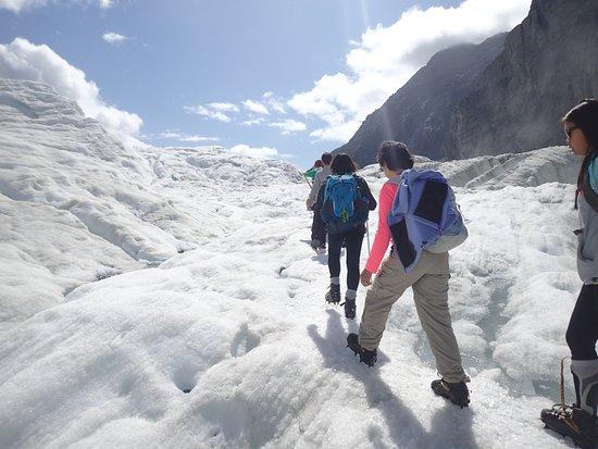 폭스 빙하 이미지