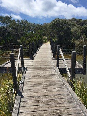 Cape Naturaliste Photo