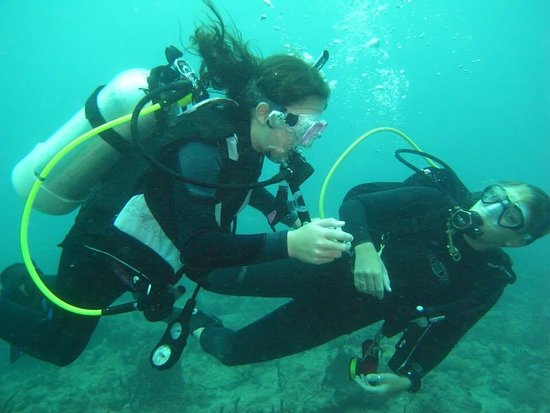 Junior Open Water Diver Class - Picture of Lands End Scuba, West ...