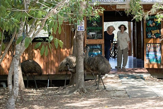 Jabiru Safari Lodge: Nature doesn't get any closer than this