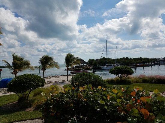 Coconut Beach Resort : 20161113_122945_large.jpg