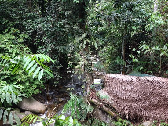 Raub District, ماليزيا: photo6.jpg