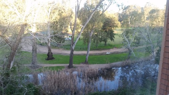 Wangaratta, Australien: View of the local park from my Room at the Park View Motel