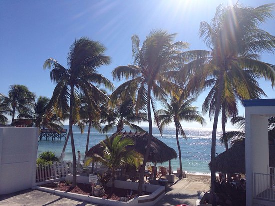 Key Colony Beach Motel: photo3.jpg